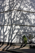 Shadows of a London plane tree on the white painted wall of a period house in King Edward Walk, SE1, in the south London borough of Lambeth.