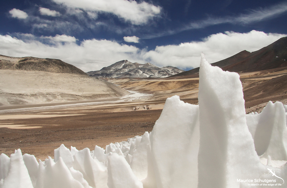 Strange ice formations rise from the high altitude desert of Chile.