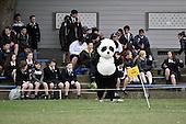 20150904 College Rugby - HVHS v Wairarapa College