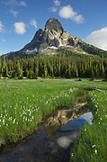 Liberty Bell Mountain reflected in waters of State Creek, Washington Pass meadows, North Cascades Washington