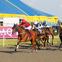 Kempton 10th July 2013