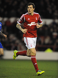 DARIUS HENDERSON NOTTINGHAM FOREST, Nottingham Forest v Leicester City, City Ground Nottingham,  Sky Bet Championship, 19th Febuary 2014