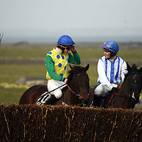 Jockeys show the horses a fence before a race at the Clare Hunt point to point in Bellharbour on Sunday.<br /> Photograph by Yvonne Vaughan