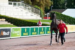 Zeibig Steffen, (GER), Feel Good 4<br /> Alltech FEI World Equestrian Games™ 2014 - Normandy, France.<br /> © Hippo Foto Team - Jon Stroud<br /> 25/06/14
