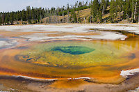 Chromatic Spring, Yellowstone National Park