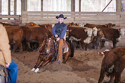 April 29 2017 - Minshall Farm Cutting 1, held at Minshall Farms, Hillsburgh Ontario. The event was put on by the Ontario Cutting Horse Association. Riding in the 25,000 Novice Horse Class is Brian Kelly on Oklahoma Redneck owned by Ron Stelzl.