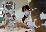 Mariko Kon works on reconstructing Jomon era vases at  the Sanmaru Museum near Sannai-Maruyama, a large settlement  of the early to middle Jomon era, about 5,500 to 4,000 years ago, in Aomori Prefecture, Japan on 12 July 2011..Photographer: Robert Gilhooly