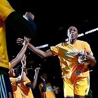 15 August 2014: Los Angeles Sparks forward Nneka Ogwumike (30) is seen during the players introduction prior to  the Los Angeles Sparks 77-65 victory over the Seattle Storm, at the Staples Center, Los Angeles, California, USA.