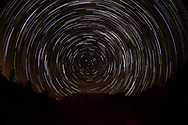 Star trails are seen above the Joshua Tree National Park in Twentynine Palms, California, August 18, 2017. (Photo by Ringo Chiu)<br /> <br /> Usage Notes: This content is intended for editorial use only. For other uses, additional clearances may be required.