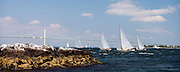 Osprey, Mischief, Surprise, and Whistler sailing in the Museum of Yachting Classic Yacht Regatta, day one.
