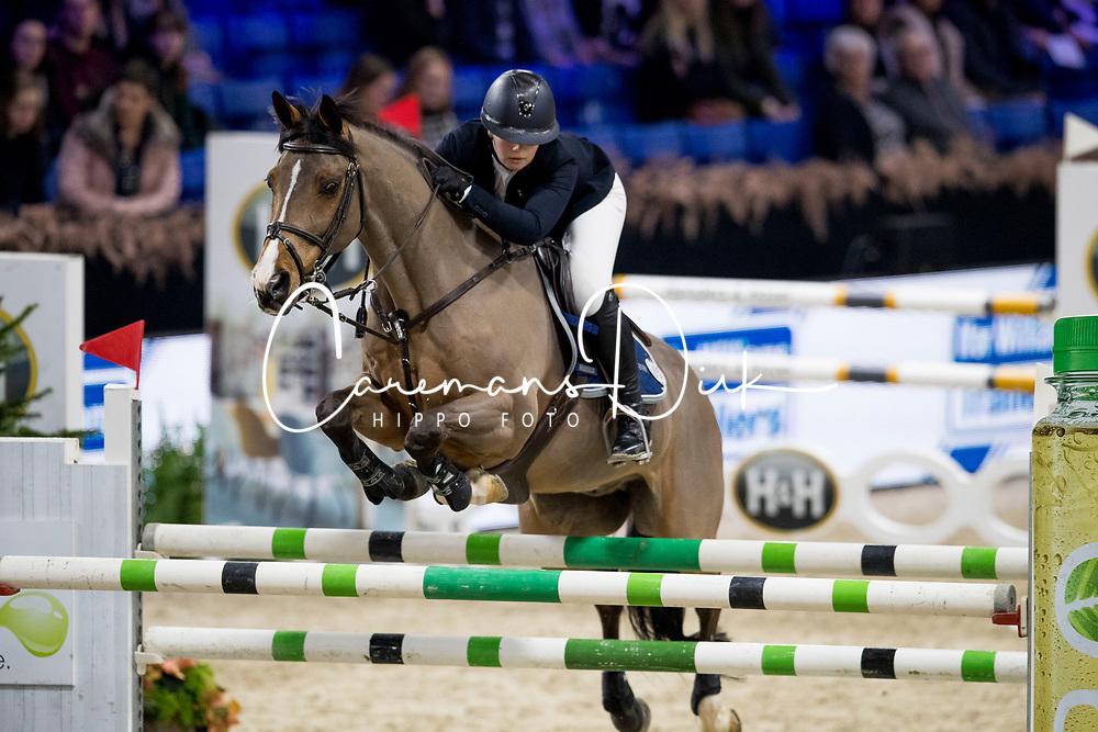 Quigley Ella, IRL, Rock Dee Jay<br /> Jumping Mechelen 2019<br /> © Hippo Foto - Sharon Vandeput<br /> 28/12/19