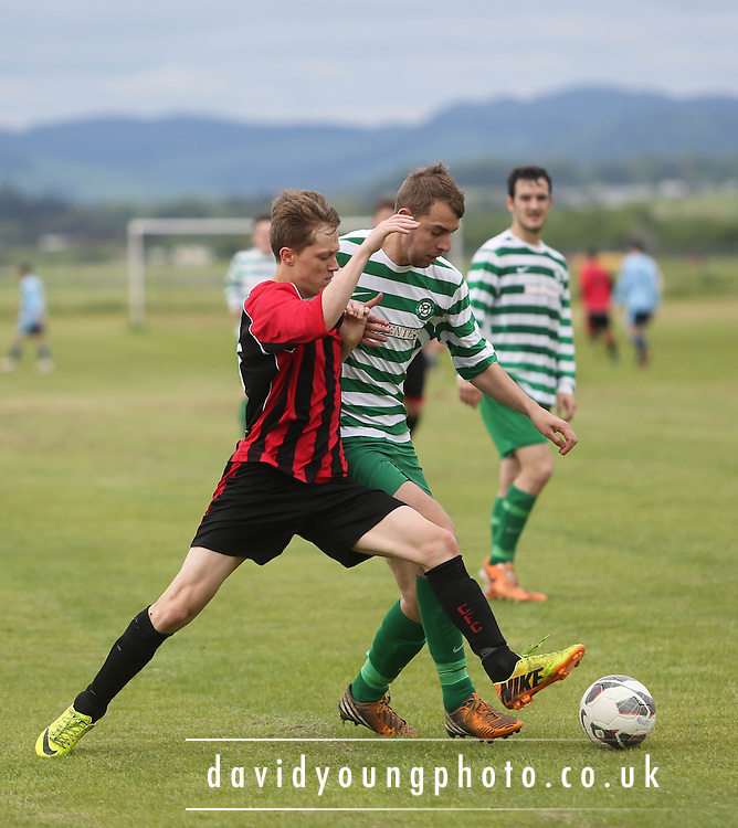 Fintry Shamrock (green and white hoops) v Kellys Gunners - Dundee Saturday Morning FA - Super Saturday at Dundee UNI<br /> <br />  - &copy; David Young - www.davidyoungphoto.co.uk - email: davidyoungphoto@gmail.com