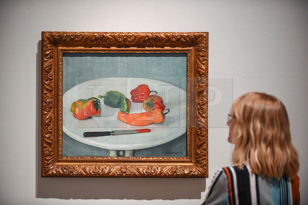 """© Licensed to London News Pictures. 27/06/2019. LONDON, UK.  A staff member views """"Red Peppers (Poivrons rouges)"""", 1915, by Félix Vallotton. Preview of """"Félix Vallotton:  Painter of Disquiet"""", an exhibition of paintings and prints Swiss artist Félix Vallotton at the Royal Academy of Arts.  Around 100 works are on show 30 June to 29 September 2019.  Photo credit: Stephen Chung/LNP"""