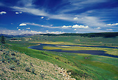 Yellowstone/Teton Area