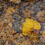 201508 Pine Creek Stockholm, Wisconsin