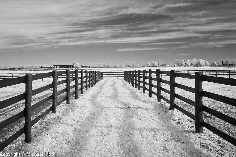 Grass lane between horse pastures in rural Kentucky. Infrared (IR) photograph by fine art photographer Michael Kloth. Black and white infrared photographs