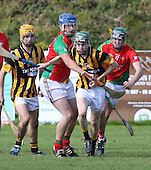 Junior hurling championship semi-final Shelmaliers V Raparees