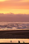 Image of Cannon Beach at sunset, Oregon, Pacific Northwest, model released