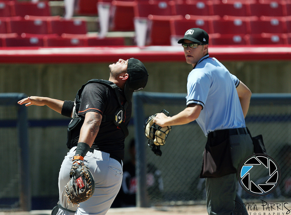 Plate Umpire Vondrak,Clint 2014 California League High Desert Victorville California MiLB