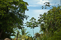 View of Golfo Dulce from Lapa Rios Ecolodge, Osa Peninsula, Costa Rica