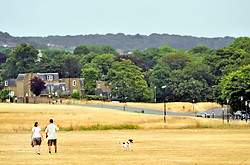 © Licensed to London News Pictures. 20/07/2018<br /> Blackheath, UK. Burnt dry grass on Blackheath Common in London, caused by a prolonged heatwave and dry period across the south of England. Photo credit: Grant Falvey/LNP