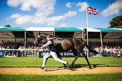 © Licensed to London News Pictures. 31/08/2016. Stamford UK. Picture shows the first horse inspection at the 2016 Burghley Horse Trials which starts tomorrow. The three day event held in the ground's of Burghley house in Stamford attracts over 160,000 visitors & has a prize fund of £250,000, the event is classified by the FEI as one of the six leading three day event's in the world. Photo credit: Andrew McCaren/LNP