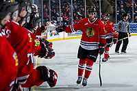 KELOWNA, CANADA - MARCH 3: Josh Paterson #17 of the Portland Winterhawks skates past the bench to celebrate a goal against the Kelowna Rockets  on March 3, 2019 at Prospera Place in Kelowna, British Columbia, Canada.  (Photo by Marissa Baecker/Shoot the Breeze)