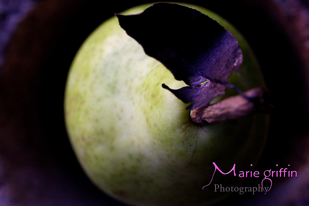 Fresh Produce.<br />