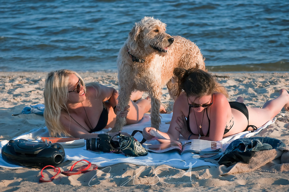 Halley Dunn and Brittany Bynum sunbathe with Dunn's dog, Harry, May 8, 2011 on Front Beach in Ocean Springs, Miss. The beach is a popular spot among tourists seeking refuge from the crowds in nearby Biloxi. (Photo by Carmen K. Sisson/Cloudybright)