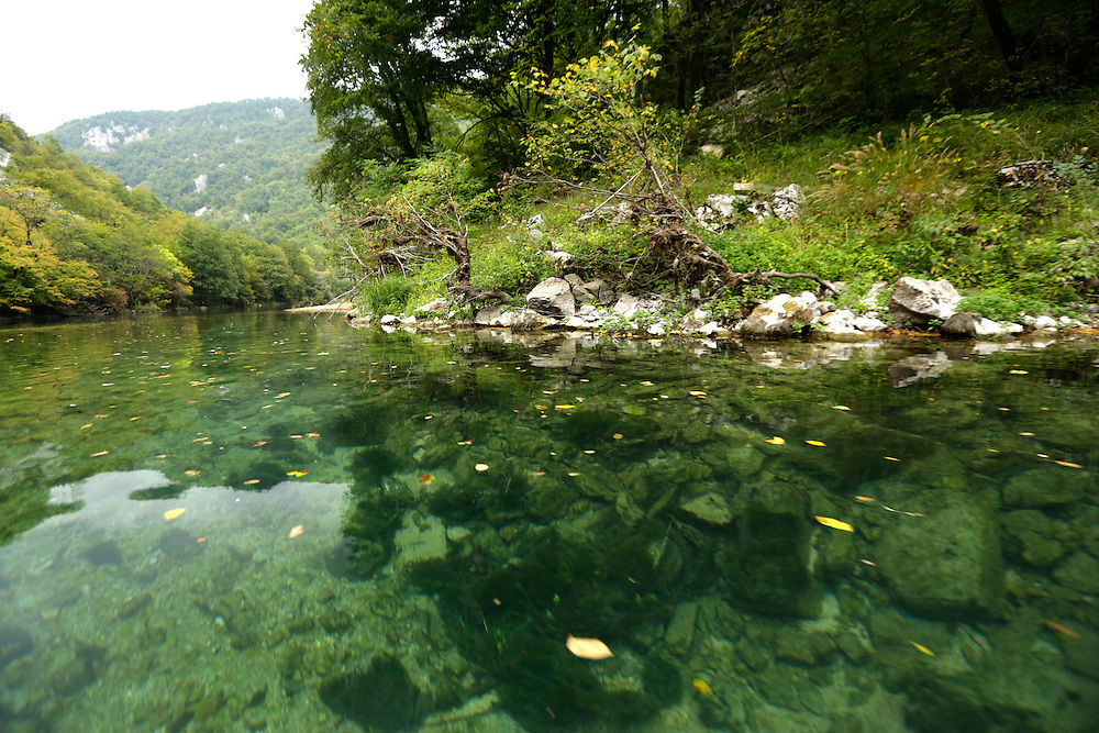 Aquatic plants and shore of Una river, Una National Park, Bosnia and Herzegovina.