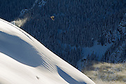 All around snowboarder Mark Sollors hits a huge backcountry jump in the Brandywine zone called 'the coop' near Whistler