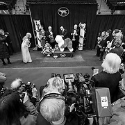 """February 11, 2013 - New York, NY : .Images from the 2013 Westminster Kennel Club Dog Show at Madison Square Garden on Monday evening. """"Swagger,"""" an Old English Sheepdog, on the winners' podium, after claiming first prize in the herding group on Monday evening. CREDIT: Karsten Moran for The New York Times"""