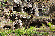 caves containing five-tiered gorinto-type stupas in the Kamakura prefecture Japan