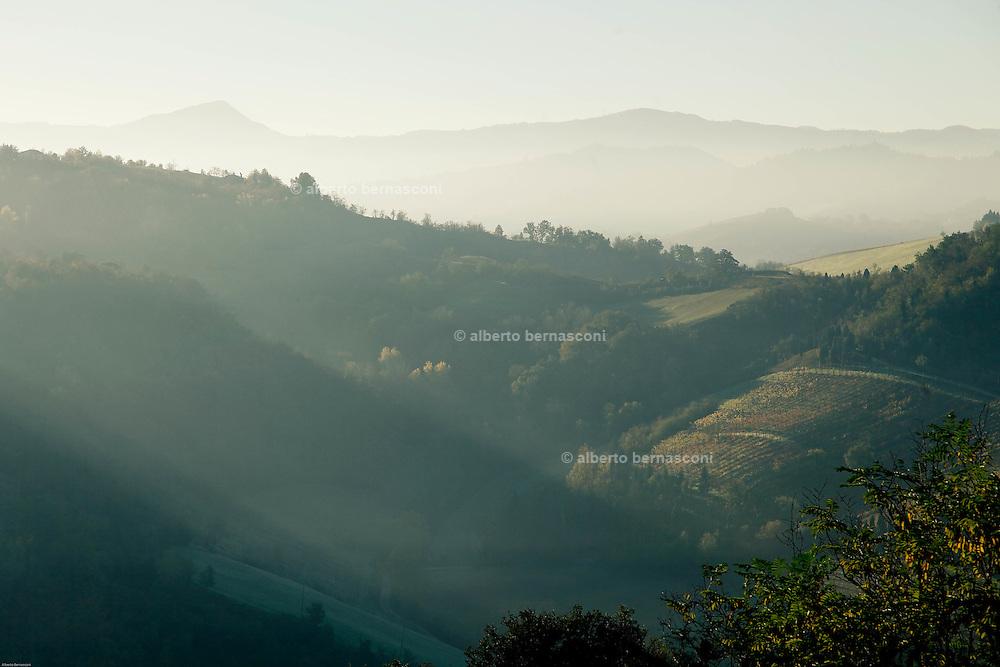 COVIBIO, COLLECTIVE wine producers , Italy, Emilia