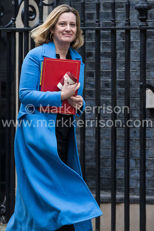 London, UK. 29th January, 2019. Amber Rudd MP, Secretary of State for Work and Pensions, leave 10 Downing Street following a Cabinet meeting on the day of votes in the House of Commons on amendments to Prime Minister Theresa May's final Brexit withdrawal agreement which could determine the content of the next stage of negotiations with the European Union.