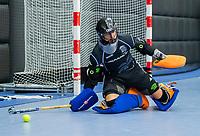 ROTTERDAM  - NK Zaalhockey,   wedstrijd om brons.  heren Oranje Rood- Kampong. OR wint.  David Wolff (Kampong).       COPYRIGHT KOEN SUYK
