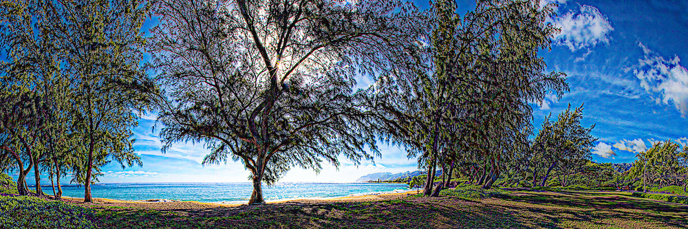 Art Panorama of windward Oahu coast from Pounders beach