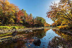 A man photographs Mud Brook, a tributary of the East Branch of the Penobscot River in Maine's Northern Forest. Fall.