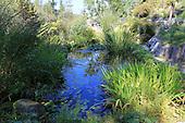 Natural Garden 887