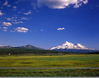 Mount Shasta from meadows surrounding Grassy Lake, Klamath National Forest California USA