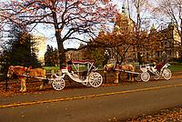 Horse Carriages & British Columbia Parliament Building, Victoria, Canada