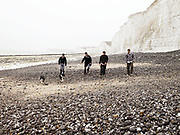 Four young men walking on beach with two dogs.