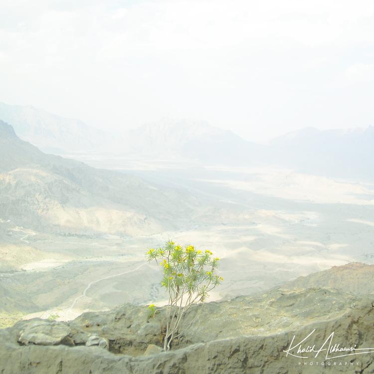 Areal view for Wadi Mistal at wilayat of Nakhal at South Al Batinah governate, Oman.