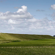 Nederland Ossenisse  gemeente Hulst  19 juni 2010 20100619       ..Serie landschappen provincie Zeeland. Zeeuws-Vlaanderen, polderlandschap landschap dijk  westerschelde.  scenery. Schapen op de dijk in de zon en op de voorgrond akkerbouw perceel. Afwisselend wisselvallig weer.   Illustratief waterveiligheid, infrastructuur, ruimtelijkheid. , schoonheid, sea level, sealevel, sheep, skies, space, sprankelend, sprankelende, stijging zeespiegel, stil, stilleven, stilte, stock, stockbeeld, streek, sunny, sustainable, terrein, typerend, typical dutch landscape, typisch hollands, typisch hollands landschap, typische, uitgestrektheid, uitzicht, uniek, unieke, veiligheid, veld, vergezicht, vergezichten, verte, vrij, vrijheid weer, water level, waterbeheer, Waterbeheerplan, waterhuishouding, waterkering, waterkeringen, Waterkeringen, waterlevel, watermanagement, waterniveau, waterpeil, waterplan, waterproblematiek, waterstaatkundige, waterstand, watersysteem, waterveiligheid, waterveiligheid en gebiedsontwikkeling, waterwerken, weersomstandigheden, wei, weide, weidegang, weiland, weiland. Landscape, wijdheid, wijds, wijdsheid, wit, witte, wolk, wolken, wolkenpartij, zeeland, zeeuws vlaanderen, zeeuws-vlaanderen, zeewering, zo vrij als een vogel, zonnig, zonnige dag, zwitserleven gevoel. .Foto: David Rozing