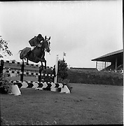 06/08/1960<br /> 08/06/1960<br /> 06 August 1960<br /> R.D.S Horse Show Dublin (Saturday). Seamus Hayes on &quot;Kilrush&quot;.