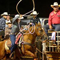 Rodeo - Cowgirls-Rope-Foley,Alabama