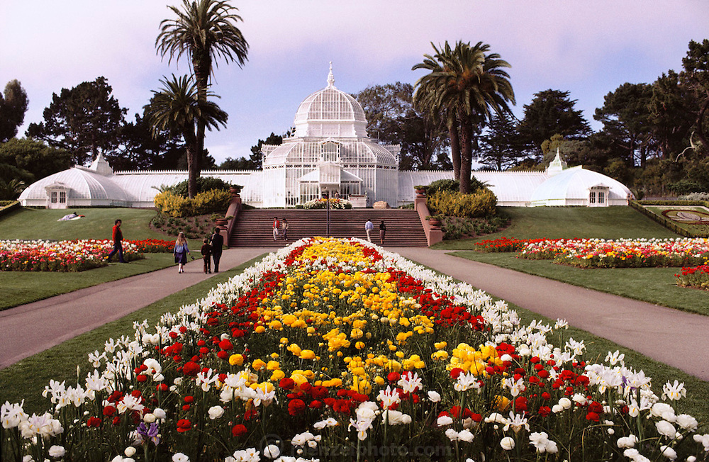 Golden Gate Park Conservatory. San Francisco, California.
