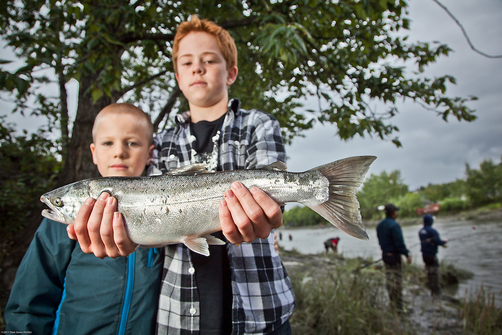 Ryan Gustason, age 12, and his cousin, David, land a Silver Salmon at Anchorage's Ship Creek within two hours of their arrivial from California.
