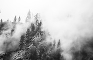 Fog covers the mountain's top and its trees at Yosemite National Park on May 15, 2017<br />