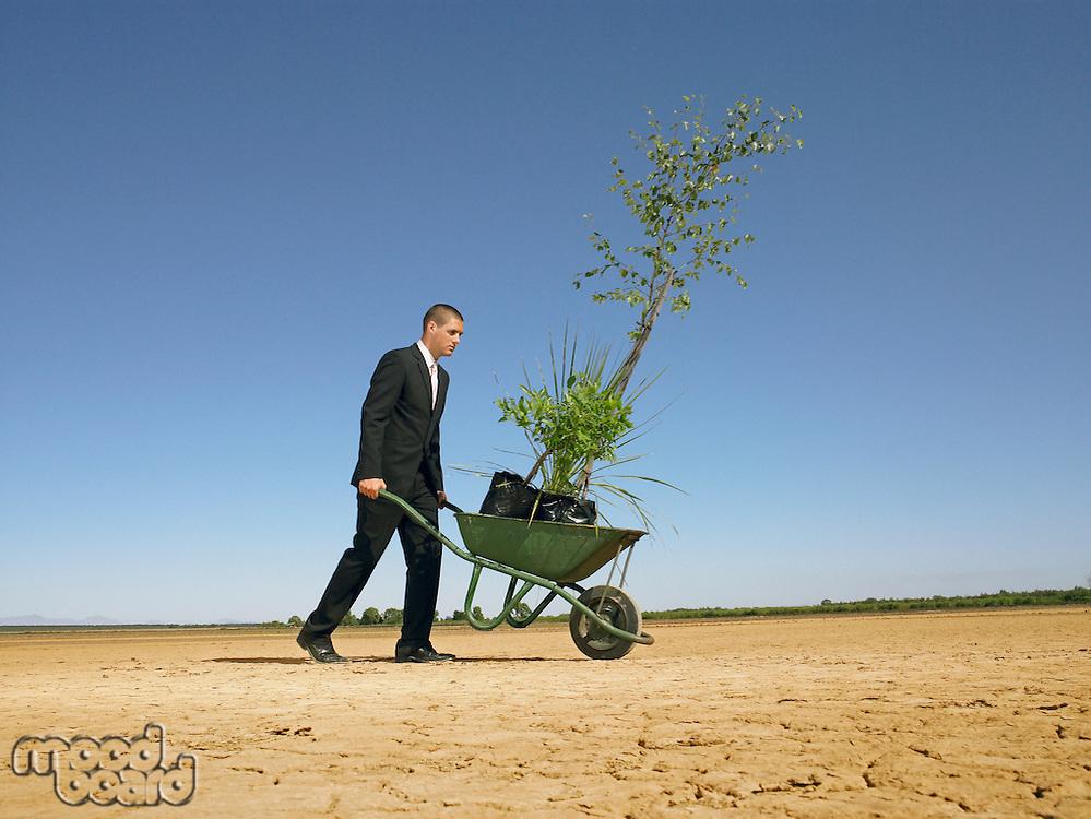 Businessman pushing wheelbarrow full of plants in desert